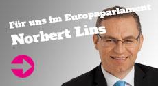 Norbert Lins MdEP